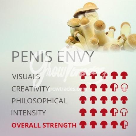 Penis envy vs golden teacher
