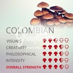 Kit de cultivo de setas Psilocybe Cubensis Colombian, Supra GrowKit 100% Micelio
