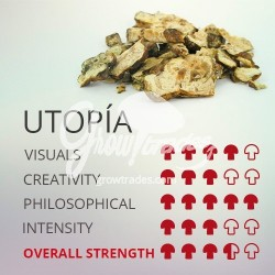 Trufas mágicas psilocybe Utopía