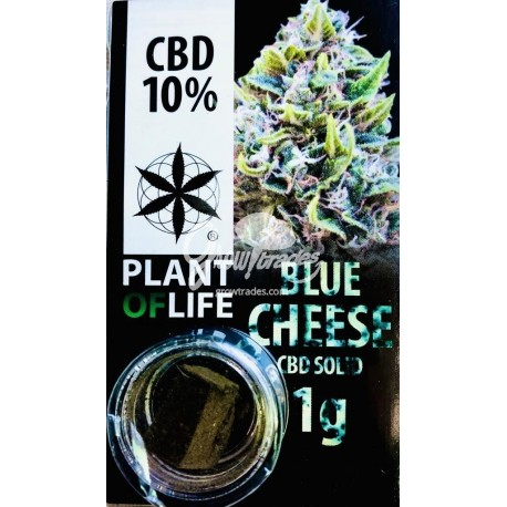Blue Cheese CBD Solid 10% (Plant of Life)