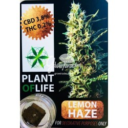 Lemon Haze CBD Solid 3,8%(Plant of Life)